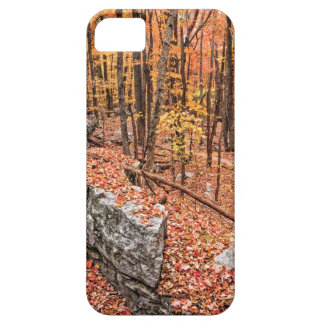 Autumn Above the Trail iPhone 5 Covers