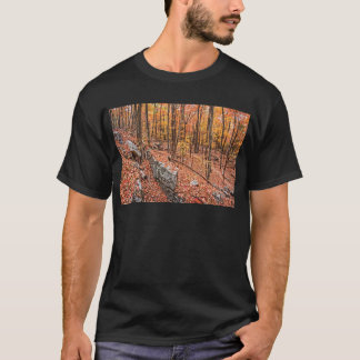 Autumn Above the Trail T-Shirt