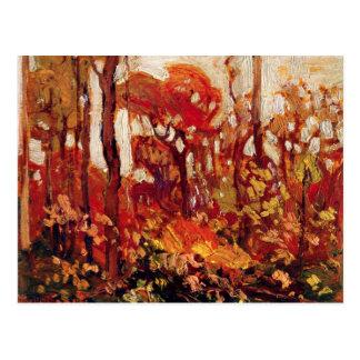 Autumn, Algonquin Park Postcard