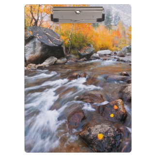 Autumn along Bishop Creek, CA Clipboard