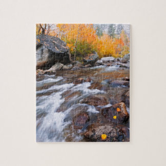 Autumn along Bishop Creek, CA Jigsaw Puzzle