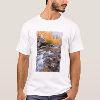 Autumn along Bishop Creek, CA T-Shirt