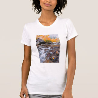 Autumn along Bishop Creek, CA T-Shirt