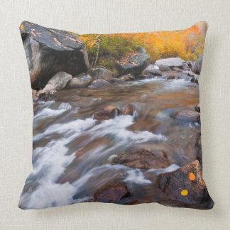 Autumn along Bishop Creek, CA Throw Pillow