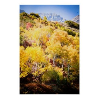 Autumn and Timp Poster