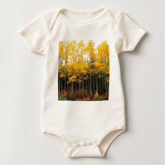 Autumn Aspen And Birch Denali Alaska Baby Bodysuit