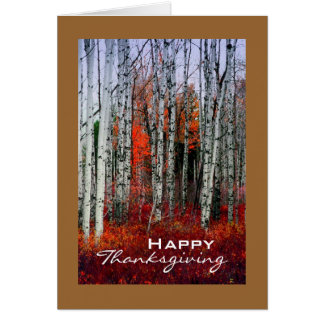 Autumn Aspen Grove, Thanksgiving Card