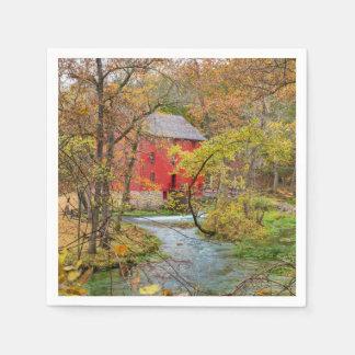 Autumn At Alley Mill Disposable Napkin