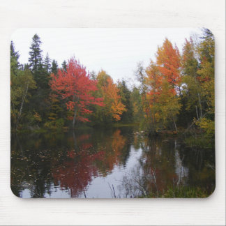 Autumn at the Pond Mouse Pad