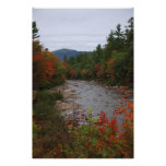 Autumn at the River Poster