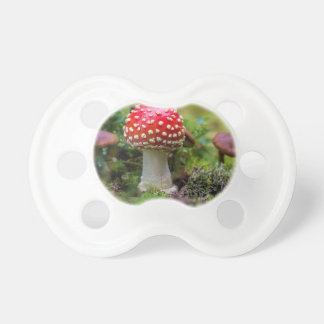 Autumn Beauty Pacifier