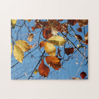 Autumn beech leaves jigsaw puzzle