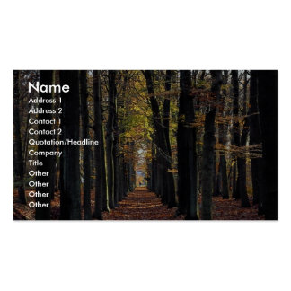 Autumn beech wood, rural Netherlands in Europe Double-Sided Standard Business Cards (Pack Of 100)
