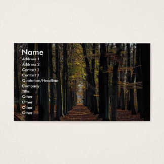 Autumn beech wood, rural Netherlands in Europe Business Card