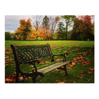 Autumn Bench Postcard