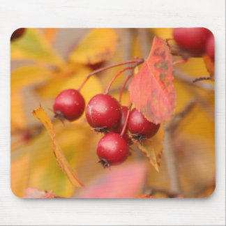 Autumn Berries mousepad