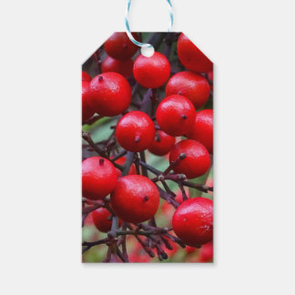 Autumn Berries Pack Of Gift Tags