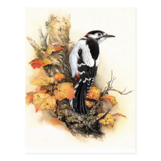 Autumn Bird Postcard