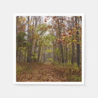 Autumn Bliss Paper Napkins