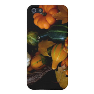 Autumn Bounty Collection iPhone 5 Case