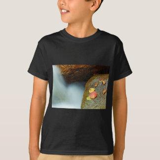 Autumn brook T-Shirt