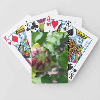 autumn bud bicycle playing cards