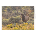 Autumn Bull Elk Custom Happy Birthday Card