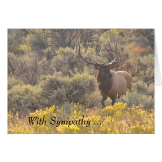 Autumn Bull Elk With Sympathy Custom Card