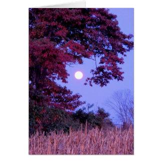 Autumn card with full moon, shingle oak.