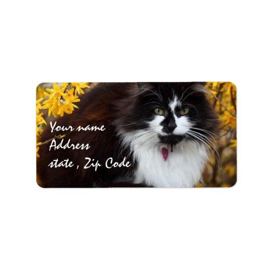 Autumn Cat Label