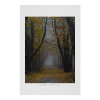 autumn cathedral poster