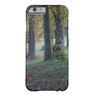 Autumn cokes barely there iPhone 6 case