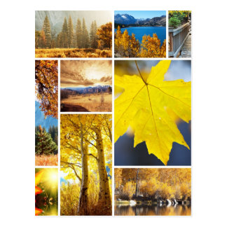Autumn collage postcard
