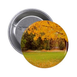 Autumn Colors 2 Inch Round Button