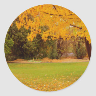 Autumn Colors Classic Round Sticker