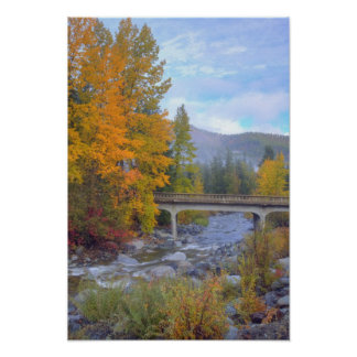 Autumn colors of forests in The Cascade Poster