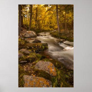 Autumn colors on Crestone Creek Poster