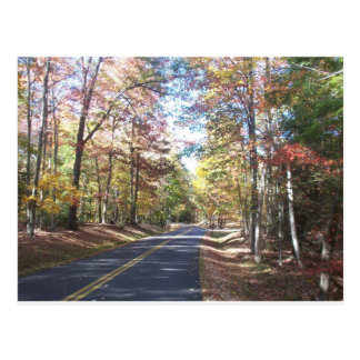 Autumn Country Road Postcard