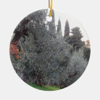 Autumn countryside with olive trees Tuscany, Italy Ceramic Ornament
