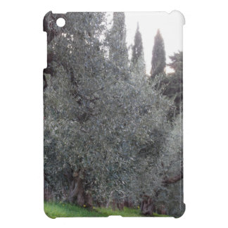 Autumn countryside with olive trees Tuscany, Italy iPad Mini Cover