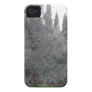 Autumn countryside with olive trees Tuscany, Italy iPhone 4 Case