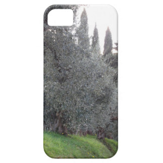 Autumn countryside with olive trees Tuscany, Italy iPhone 5 Cover