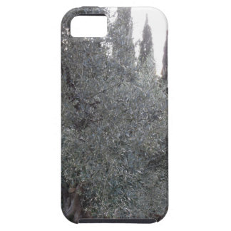 Autumn countryside with olive trees Tuscany, Italy iPhone 5 Covers
