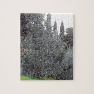 Autumn countryside with olive trees Tuscany, Italy Jigsaw Puzzle