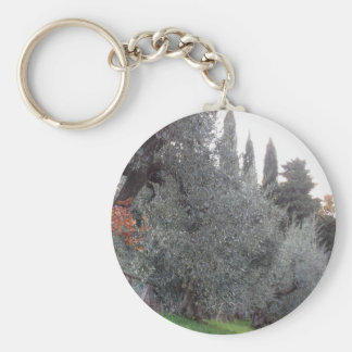 Autumn countryside with olive trees Tuscany, Italy Keychain