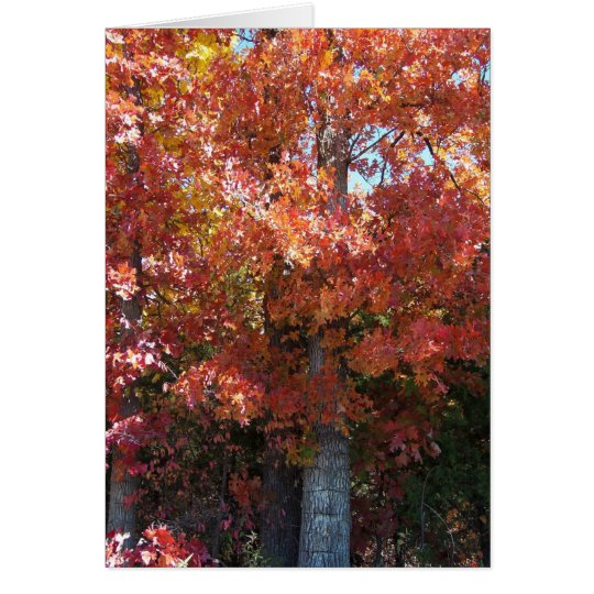 Autumn Crisp Card