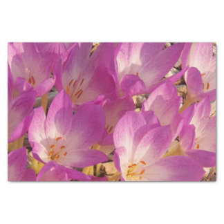 Autumn Crocuses Floral Tissue Paper