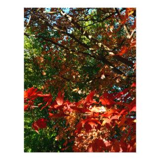 Autumn Custom Letterhead