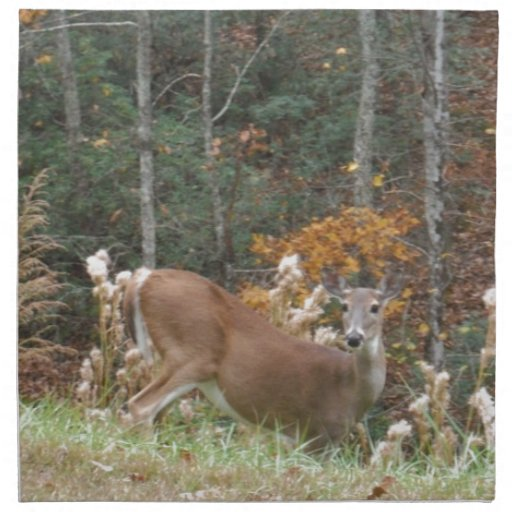 Autumn Deer in Lake Arrowhead GA Cloth Napkin