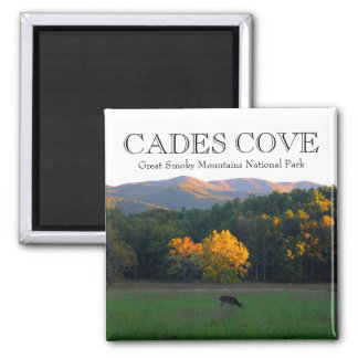 Autumn deer wildlife cades cove great smoky mtns magnet